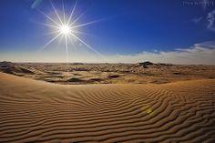 The Desert Under The Sun