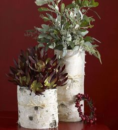 birch bark crafts   Birch bark crafts and decorating ideas with rustic flair