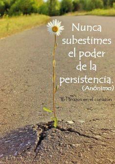 Nunca subestimes el poder de la persistencia. (Anónimo) @trazosenelcorazon #reflexionesprofundas