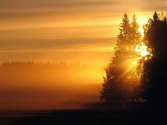 Nascer do Sol... sem dúvida, um grande ou o maior espetáculo da Terra, proporcionado diariamente, e gratuitamente. Fotos do Nascer do Sol - Supercomentario.com.br                                                                                                                                                     Mais