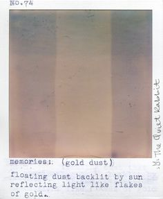 no.74 memories. (gold dust). floating dust backlit by sun reflecting light like flakes of gold. -the quiet rabbit