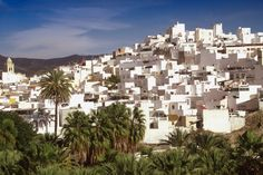 Almuñécar (Granada), by Granada, Places To See, Places Ive Been, Costa, Tropical, Cities, Ancient Architecture, Amazing Destinations, Where To Go