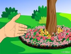 How to plant a flower bed around a tree.