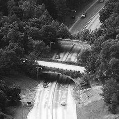 Motor Parkway Bridges, Lake Success, NY, Robert Moses,1931