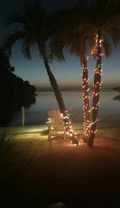 Travel quotes beach palm trees 30 Ideas for 2019 Tropical Christmas, Beach Christmas, Coastal Christmas, Christmas Lights, Merry Christmas, Caribbean Christmas, Christmas Scenery, Christmas Sayings, Xmas