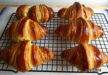 Yeast Free, Gluten Free, Dairy Free, Sourdough Starter | The Fresh Loaf