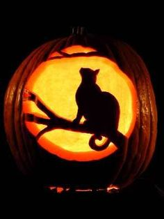 Moonlit Cat pumpkin carving (many more examples on the website)