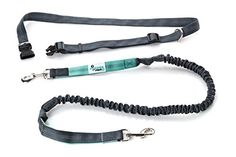 """Hands Free Dog Leash For Running, Jogging, Walking, Hiking, Adjustable Waist Belt (Fits up to 48"""" waist), Reflective Stitching, Durable Dual Handle Bungee Leash"""
