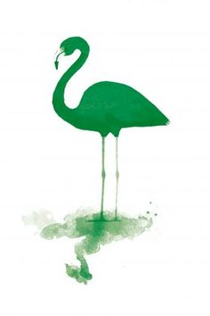 Green Flamingo from Wallstudio
