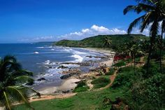 Travel Best Beaches In Goa.Goa's beaches cover about 125 kilometres mi) of its coastline. These beaches are divided into North and South Goa. Goa India, India Tour, South India, Tourist Places, Places To Travel, Places To Visit, Tourist Spots, Travel Destinations, Goa Travel