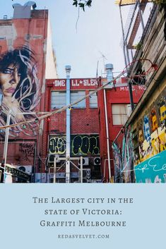 Melbourne's inner suburbs are full of graffiti. Influenced by the graffiti of New York, local artists decorate the steel gray jungle with color. Visit Melbourne, Melbourne Australia, Australia Kangaroo, New Year Fireworks, Local Artists, Graffiti, Felt, Victoria, York