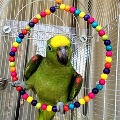 Wood Swing Bird Toy Parrot Cage Toys Finch Parakeet Cockatiel Lovebird Budgie for sale online Diy Budgie Toys, Diy Parrot Toys, Diy Bird Toys, Cockatiel, Budgies, Parrots, Diy Bird Cage, Parrot Perch, Wood Swing