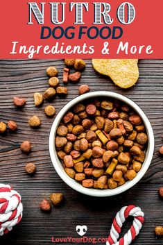 Thinking of introducing your dog to one of Nutro's dog food lines? We break down Nutro Wholesome Essentials, Nutro Ultra and Nutro Limited Ingredient in this food review. #loveyourdog #dogfoodreview #nutrodogfood #bestdogfood #Doghealth #dogdiet Nutro Dog Food, Best Dog Food, Health Extension Dog Food, Dog Food Reviews, Grain Free Dog Food, Dog Diet, Best Puppies, R Dogs, Allergy Free