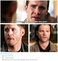 [gifset] I love how they get so offended.