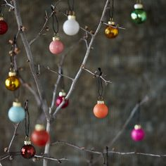 "Brightly colored in rainbow hues to deck the halls with cheer, this collection of tiny bulbs was crafted especially for terrain.- A terrain exclusive- Set includes 49 bulbs- Glass- ImportedBulb: 1"" diameterBox: 1.75""H, 7.5""W, 7.5""L"