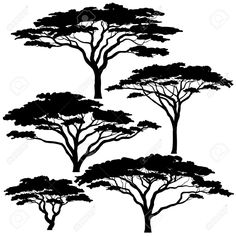 38594229-Set-of-eps8-editable-vector-silhouettes-of-acacia-trees-Stock-Vector.jpg (1300×1300)