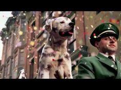 Budweiser Dog Commercial