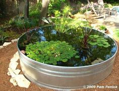 great garden pond idea made from a stock tank. don't have the tank but do have a round formal fountain that I've converted into a koi/goldfish pond.  just need the water plants.
