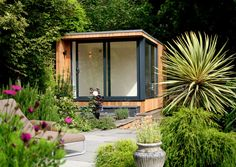 Great outdoor room with timber clad external , skillion room and powder coated black sliding doors frames.