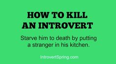 An Introvert's Miracle Diet - New Post On Introvert Spring