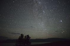 night sky – THE GENERALIST