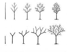 Bomen tekenen Tree Drawing Simple, Basic Drawing, Drawing Lessons, Step By Step Drawing, Drawing Techniques, Doodle Drawings, Easy Drawings, Doodle Art, Autumn Art