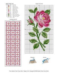Gallery.ru / Фото #101 - розы разные - irisha-ira