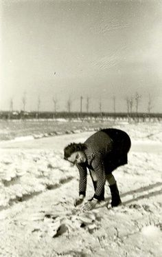 Westerbork, Holland, The secretary of the camp's commander collecting snow.