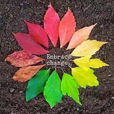 On this warm first day of Autumn.change is inevitable. Invite it in and embrace it Positive Psychology, Positive Quotes, Spiritual Quotes, Spiritual Awakening, Embrace Change Quotes, Embrace It, Namaste, Karma, Mind Body Soul