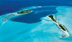 Avec plus d'un millier d'îles, les Maldives constituent l'un des paradis pour les plongeurs. Vous pourrez y croiser des requins-baleines et des requins-marteaux, des raies mantas, mais également des récifs coralliens parmi les plus spectaculaires. Petit plus, les débutants pourront se contenter d'un masque et d'un tuba pour admirer des milliers de