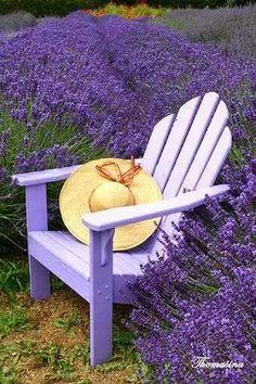 glicine garden poltron