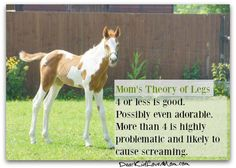 Mom's Theory of Legs 4 or less is good. Possibly even adorable. More than 4 is highly problematic and likely to cause screaming. DearKidLoveMom.com