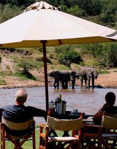 Elefanter set fra Karen Blixen Camp