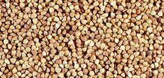 How to Grow Bulgar Wheat | eHow UK