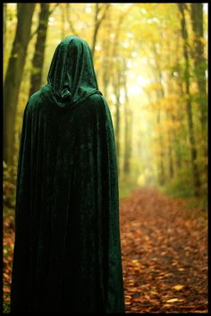 shadows-secret-garden:  3foldlaw:  by =Amras-Arfeiniel