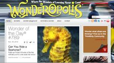 Learning Together in 4th Grade!: Nonfiction Websites