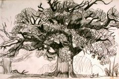 La felicità di piantare alberi