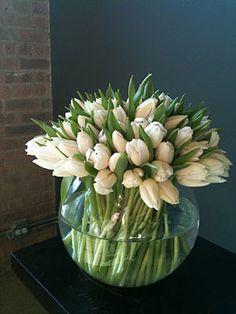 White tulips....love