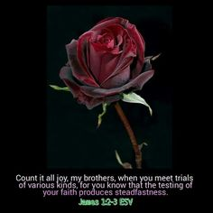 """Suffering That Strengthens Faith """"Count it all joy, my brothers, when you meet…"""