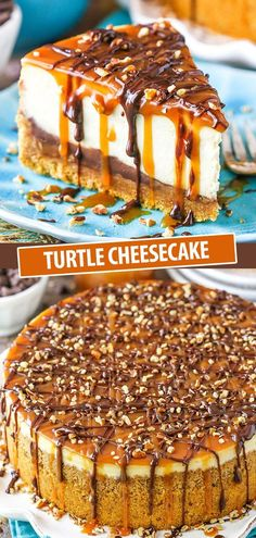 Smooth creamy cheesecake filled with caramel, chocolate, pecans, and a graham cracker crust. A fun and tasty holiday dessert! # Turtle Cheesecake Smooth creamy cheesecake filled with c Turtle Cheesecake Recipes, Cheesecake Desserts, Köstliche Desserts, Delicious Desserts, Dessert Recipes, Yummy Food, Health Desserts, Birthday Cheesecake, Cheesecake Squares