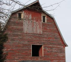 your face is as big as the side of a barn