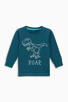 Buy Teal Long Sleeve Dinosaur T-Shirt (3mths-6yrs) from the Next UK online shop