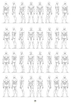 AnatoRef — Masters of Anatomy Body Reference Drawing, Drawing Body Poses, Human Anatomy Drawing, Human Figure Drawing, Anatomy Art, Art Reference Poses, Anatomy Reference, Anatomy Poses, Drawing Tips