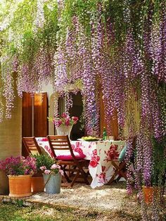 Alfresco Affair under the wisteria . Outdoor Rooms, Outdoor Dining, Outdoor Gardens, Outdoor Decor, Indoor Outdoor, Hanging Plants Outdoor, Hanging Flowers, Outdoor Pergola, Pergola Lighting