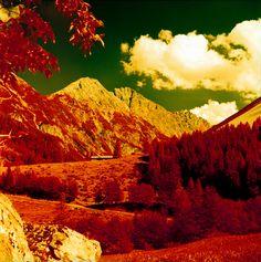 Taken with a Lubitel 166+. Kodak Aerochrome EIR film (Color Infrared film). in Austria. by jennson