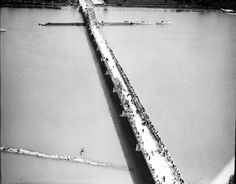 Grosse Ile (Mich.) - Free Bridge To Trenton; Opening Day; 9-3-1931