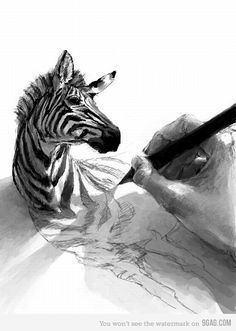 zebra in zeichnung (Cool Art Inspiration) Art And Illustration, Cartoon Illustrations, Design Illustrations, Drawn Art, Hand Drawn, 3d Drawings, Pencil Drawings, Awesome Drawings, Realistic Drawings