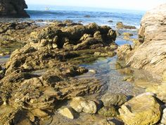 Cameo Shores Beaches and Tide Pools