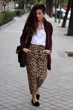 Leopard, white shirt, oxblood cardigan