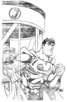 Mike Wieringo Superman